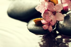 cultiver sa tranquilité