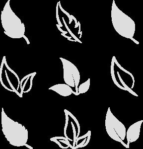 feuilles pastels